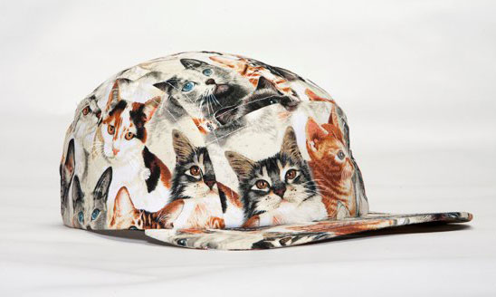 Here s that Five-Panel Cat Snapback you ve been looking for  0e7b87f0fff
